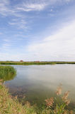 Wetlands Stock Photography