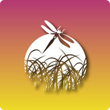 Wetlands. Dragon fly and grass icon by the sunset stock illustration