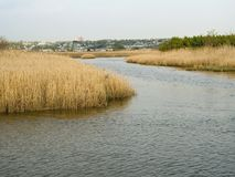 Wetlands. A view of the Hackensack River and the wetlands known as the Meadowlands in Secaucus New Jersey stock photo