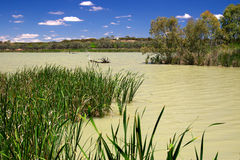 Wetlands. The wetlands on the murray at banrock station royalty free stock photos