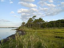 Wetlands. A wide angle view of the wetlands near Ocean City, Maryland Stock Photo