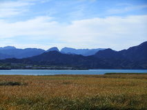 wetlands fotos de archivo libres de regalías