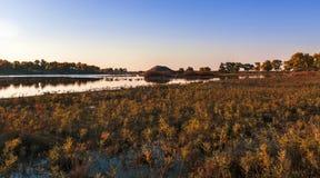 wetlands стоковое изображение rf