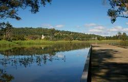 Wetlands. Conservation, Queensland, Australia royalty free stock image