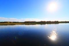 wetlands Стоковое фото RF