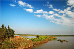 Wetlands and blue sky. The wetlands under the blue sky in autumn Stock Images