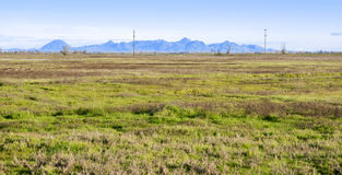 Wetlands in the California Central Valley Stock Photos
