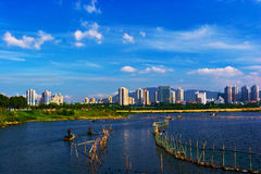 Wetlands in the city Stock Image