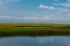 Wetlands with an Egret in the Water. Shot overlooking NJ wetlands with blue skies, white clouds and an egret in the water Stock Photos