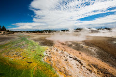 Wetlands with geothermal in yellowstone park. Wetlands with eruption of the geothermal under blue sky in yellowstone park stock photo