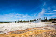 Wetlands with geothermal in yellowstone park. Under blue sky and white cloud stock image