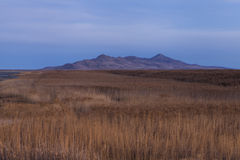 Wetlands of the Great Salt Lake Royalty Free Stock Photos