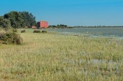 Wetlands in the Kizilirmak delta Stock Images
