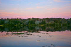 Wetlands lake at sunset Stock Photography