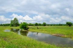 WETLANDs landscape Royalty Free Stock Images