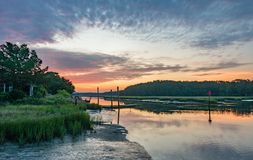 Wetlands Royalty Free Stock Images