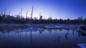Lakes and Numbers in wetlands. Wetlands are the lungs of the earth, and most of the trees that grow there have no leaves, perhaps because of the lake royalty free stock photo