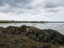 Wetlands and mass of seaweed at low tide near Maghery, Donegal Stock Photos