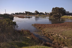 Wetlands on Monterey Bay. This is a picture of wetlands near Moss Landing on the Monterey Bay stock photography
