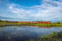 Wetlands in Nature Reserve with train , Fertile swamp and various biology in nature Stock Photos