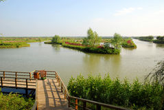 Wetlands park. With wooden handrail and long river Stock Photo