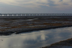 Wetlands of the river, the longest bridge in the world by the hangzhou bay. Reflection in wetland with blue sky white cloud, is the longest bridge in the Stock Images