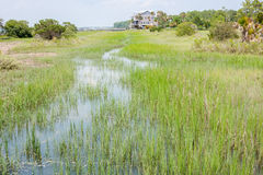 Wetlands Of South Carolina. Wetlands at the beach of South Carolina royalty free stock photography