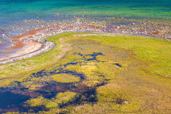 Wetlands on the south side of Oland, Sweden Stock Images