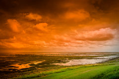 Wetlands at sunset Royalty Free Stock Image