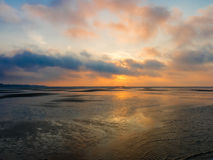 Wetlands sunset on north sea near Rotterdam, Netherlands Royalty Free Stock Image