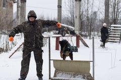 Wettbewerb für Hunde Lizenzfreies Stockbild