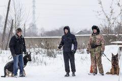Wettbewerb für Hunde, der Spaß beginnt im Winter, redaktionell Stockfotografie