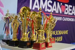 Wettbewerb von Nagelstilisten in Kasachstan astana 10. November 2017 Lizenzfreie Stockfotografie