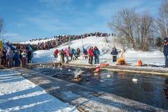 Wettbewerbe auf Schwimmen im Schmelzwasser, am Festival Winter fu Stockfotografie