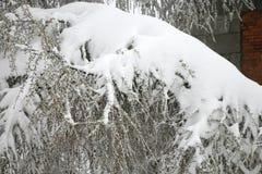 Wetterabweichung Schnee im Mai Stockbild