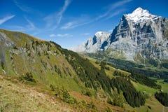 Wetterhorn Stock Images