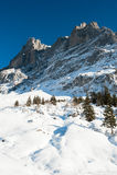 Wetterhorn above Grindelwald Royalty Free Stock Photos