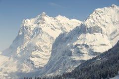 Wetterhorn mountain in winter, Grindelwald, Switzerland. Royalty Free Stock Image