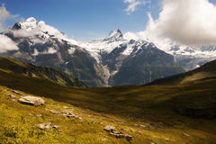 The Wetterhorn and the Schreckhorn near Grindelwald Switzerland Royalty Free Stock Photography