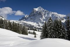 Wetterhorn in winter Stock Images