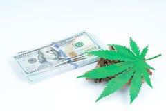 Wettigheid van cannabis, wettelijke en onwettige cannabis op de wereld Het concept van de WET royalty-vrije stock foto's