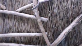 Wewnętrzna strona Trzcinowy dach zbiory