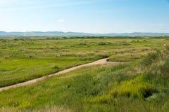 WEWNĘTRZNY MONGOLIA CHINY, Aug, - 10 2015: Miejsce Xanadu (Światowy Herit obrazy stock