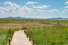 WEWNĘTRZNY MONGOLIA CHINY, Aug, - 10 2015: Miejsce Xanadu (Światowy Herit zdjęcia royalty free