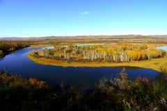Wewnętrzny Mongolia obszar trawiasty Obraz Royalty Free