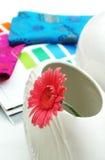 Wewnętrzny projekt, gerber stokrotka, kwiat w białej wazie Fotografia Royalty Free