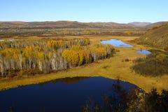 Wewnętrzny Mongolia obszar trawiasty Zdjęcia Stock