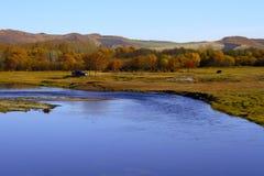 Wewnętrzny Mongolia obszar trawiasty Zdjęcie Royalty Free