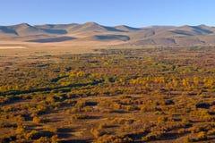 Wewnętrzny Mongolia obszar trawiasty Zdjęcia Royalty Free