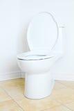 wezbrana toaleta Fotografia Stock